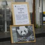 Poster WWF